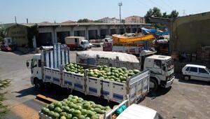 Yalova'da yılın 8 ayında halden 27 bin ton meyve-sebze çıkışı yapıldı