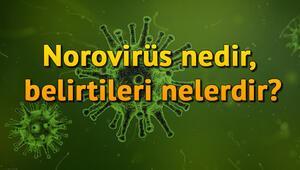 Norovirüs nedir, belirtileri nelerdir