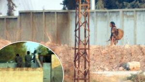 Teröristler, Türkiye sınırında dolaşmayı sürdürüyor
