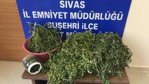 Suşehrinde uyuşturucu operasyonunda 4 gözaltı