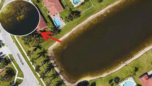 Cesedi Google Earth buldu