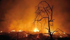 Her yıl İngiltere kadar orman yanıyor