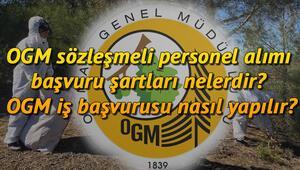 OGM sözleşmeli personel alımı başvuru şartları nelerdir OGM iş başvurusu nasıl yapılır
