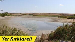 Göletteki sular çekildikçe telef olan balık sayısı artıyor
