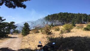 Kızılcaham'da orman yangını