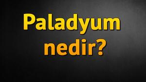 Paladyum nedir