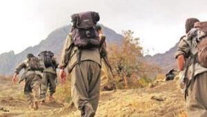 Hakkaride PKKlı terörist teslim oldu