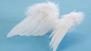 Bugün melek kartı seçtiniz mi