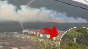 Son dakika: Pendikteki orman yangınıyla ilgili bir kişi gözaltında