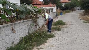 Turhalda kaldırım ve yol kenarlarında yabani ot temizliği