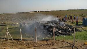 Şanlıurfada 12 ton pamuk yandı
