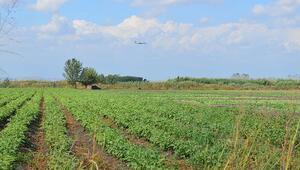 79 bin hektarlık alan ekonomiye kazandırıldı
