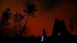Endonezya'da orman yangını felaketi