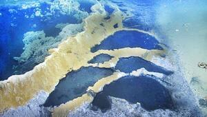Dünyanın 'ölüm jakuzisi'! Okyanusun altında ortaya çıktı...