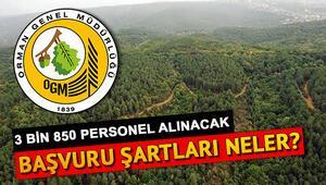 Orman Genel Müdürlüğü (OGM) personel alımı başvuruları ne zaman bitecek Orman muhafaza memuru ve orman mühendisi alımı başvuru şartları neler