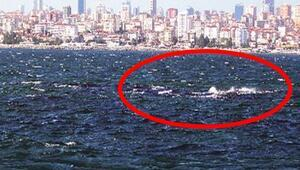 İstanbulda denizin altındaki gizem Birçok kişi varlığından bile haberdar değil...