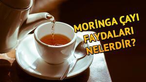 Moringa çayı nedir Moringa çayı faydaları ve zararları nelerdir
