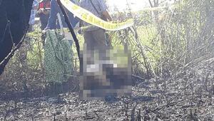 Halk eğitim eski müdürü tarlasında çıkan yangında öldü