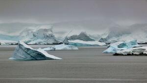 Antarktikadaki dev buz kütlesi neden koptu