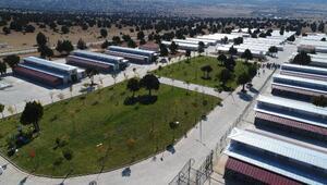 Konyada 1 milyon metrekarelik alana modern hayvan barınağı