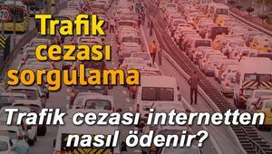 Plakadan trafik ceza sorgulama işlemi nasıl yapılır Trafik cezası internetten nasıl ödenir