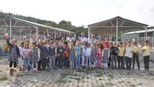 Malkarada öğrencilerden hayvan barınağına ziyaret