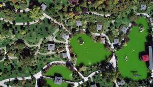Bu park Japonyadaymış hissi uyandırıyor