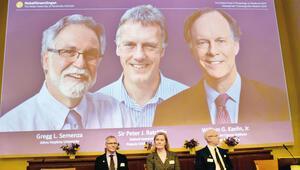 Nobel Tıp Ödülü hücrebilimcilere