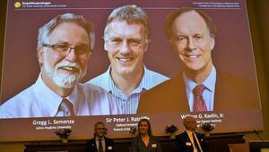 2019 Nobel Tıp Ödülünü kazananlar açıklandı