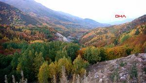 Burası Türkiye Büyüleyici sonbahar renkleri