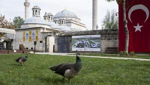 Osmanlının şifa yöntemlerinin anlatıldığı müzeye ziyaretçi akını