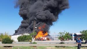 Son dakika...Antalyada soğuk hava deposunda yangın