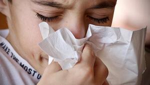 Sonbahar alerjisi nasıl geçer Sonbahar alerjisi nedir