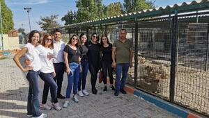Hayvanseverlerden toplanan 500 kilo mama barınağa bağışlandı