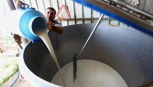 Sütün litresine 30 kuruşluk zam, üreticileri sevindirdi