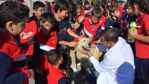 Barınakta hayvan sevgisi aşısı