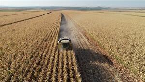 Tarım- ÜFE yüzde 1,59 arttı