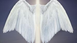 Günün melek kartı bugün ne söylüyor