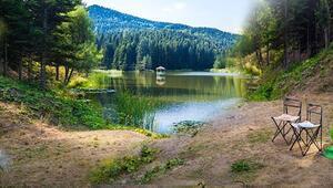 Türkiye'nin pek bilinmeyen yeşil cenneti...Kartpostallık manzarasıyla hayran bırakıyor