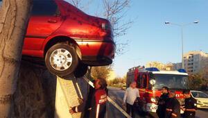Son Dakika: Gören şaştı kaldı Akılalmaz kaza...