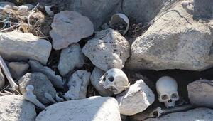Kayseri'de ürküten görüntü