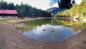 Sonbaharı en güzel yaşayacağınız yer: Limni Gölü