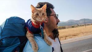 Sevimli Azman otostopla Türkiyeyi geziyor