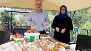 Zonguldakta emekli çift üretmeye başladı Taleplere yetişemiyorlar