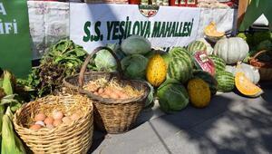 Mustafakemalpaşa'da yöresel ürünler festivalde görücüye çıkacak
