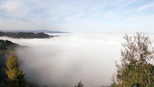 Bolu Dağında sis güzel görüntüler oluşturdu