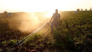 Yenişehirli çiftçiler sulama sorununa çözüm bekliyor