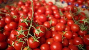 52 bin tonla domates birinci