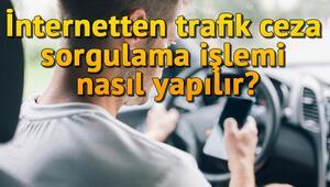 İnternetten trafik ceza sorgulama işlemi nasıl yapılır