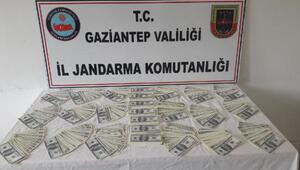 Gaziantepte sahte dolara: 2 gözaltı